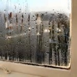 Window sill moisture and mold